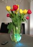 Wasserdichtes LED-Stimmungslicht mit Farbwechsel