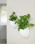 Eco Pod - 2er Set. Selbstbewässernder Pflanzentopf
