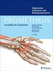 Allgemeine Anatomie und Bewegungssystem.