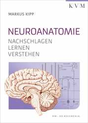 Neuroanatomie.