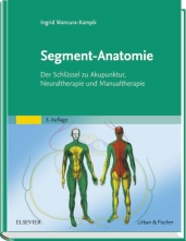 Segment-Anatomie.