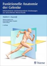 Funktionelle Anatomie der Gelenke.