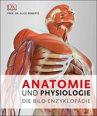 Erfreut Anatomie In Den Nachrichten Zeitgenössisch - Anatomie und ...