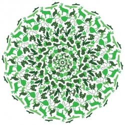 Waldspaziergang (grün) - natürliche Entspannung für Ihre Praxis-Räume!
