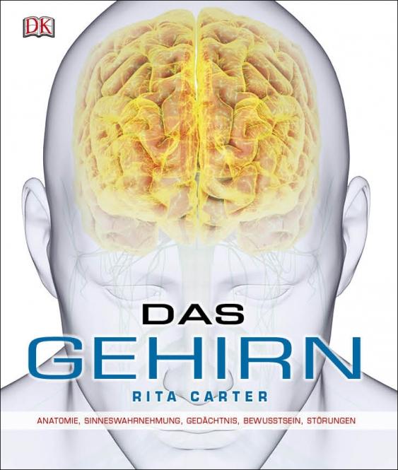 Medizin Fachbücher zu Bildgebende Verfahren Radiologie