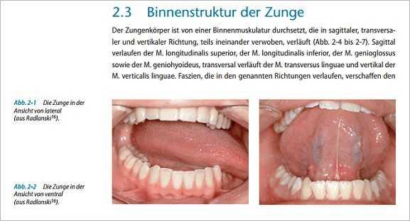 Fachbücher, Software und DVDs | Die Zunge. | medienservice medizin