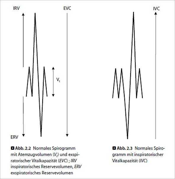 Fachbücher, Software und DVDs   Lungenfunktion und Spiroergometrie ...